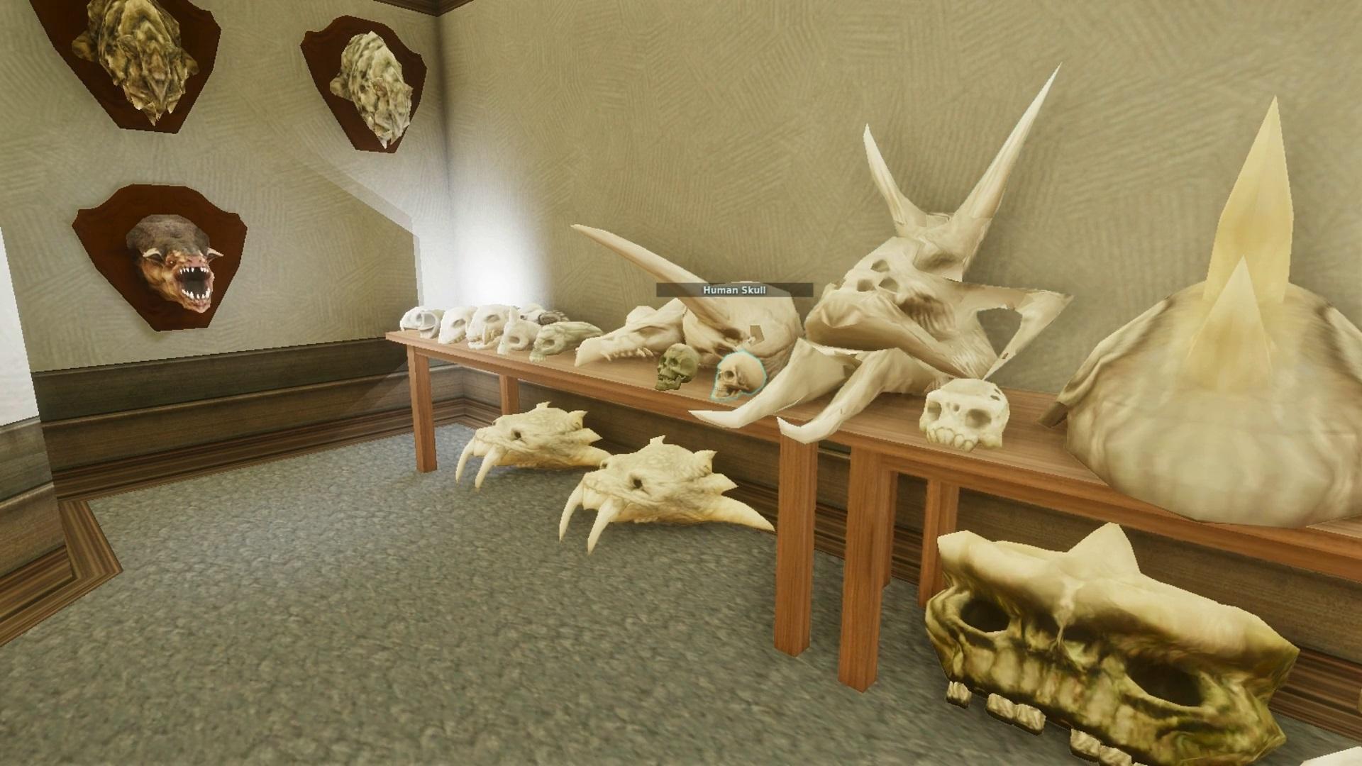 Creature Museum